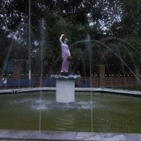 фонтан, Ташла