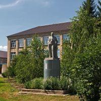 Ленин в Шарлыке, Шарлык