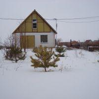 House, Энергетик