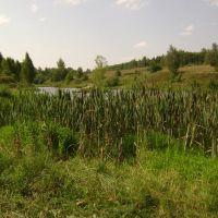 Ямской пруд, Болхов