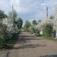 Весна на ул. Чапаева, Верховье
