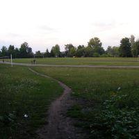 Стадион п.Долгое, Долгое