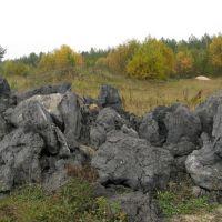 """Национальный парк """"Угра"""", Знаменское"""