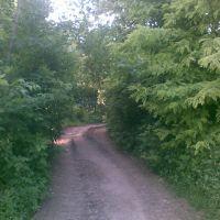 Зеленый корридор (The Green corridor), Знаменское