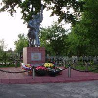 Памятник, Знаменское