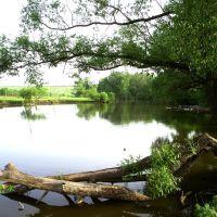 Озерки, Колпны