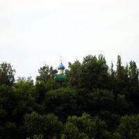 Ливны.Орловская обл.Храм.Вид с моста., Ливны