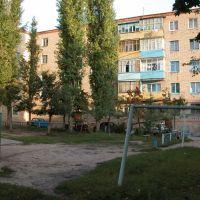 Двор детства, Ливны