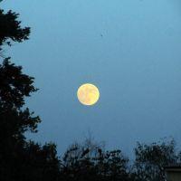 Полная Луна за месяц до затмения, Орел