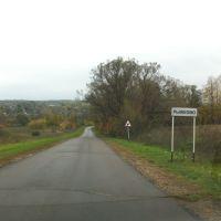 Рыжково Орловская область сен 2012, Сосково