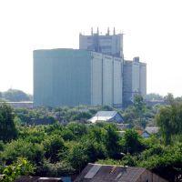 Башмаковский Мукамольный завод, Башмаково