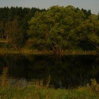 Old Pond, Башмаково