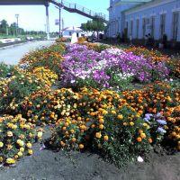 Вокзал в Башмаково, Башмаково