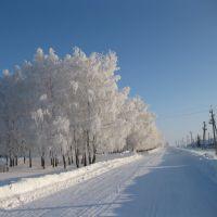 ул.МОСКОВСКАЯ ( 7 января 2011 г.), Башмаково
