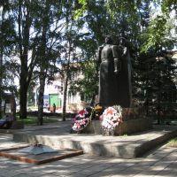 ВЕЧНЫЙ ОГОНЬ., Башмаково