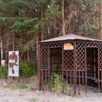 Дачная остановка, Беднодемьяновск
