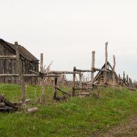 Поселок Красная Новь, Беднодемьяновск