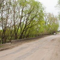Мост через Вязовку, Беднодемьяновск
