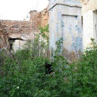 Усадьба в Загоскино, Беднодемьяновск