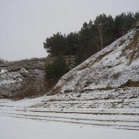 Новый пруд. Зима., Белинский