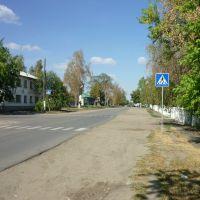 Улица Лермонтовская, Белинский