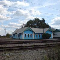 ж/д станция в с.Бессоновка, Бессоновка