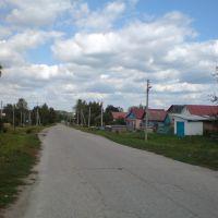 улица в Бессоновке, Бессоновка