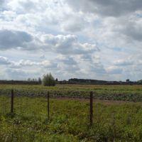 окраина села, Бессоновка