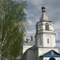 Михайло-Архангельский храм., Вадинск