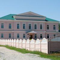 Здание присутственных мест, Городище