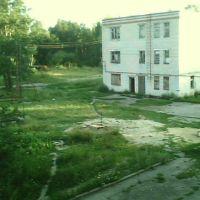Дурдом, Евлашево