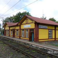 ЕВЛАШЕВО. Вокзал., Евлашево