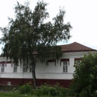 House and a birch, Земетчино