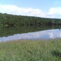 Верхний пруд вид с солнечной стороны, Золотаревка
