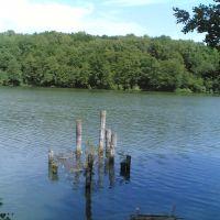 Бывшая вышка на пруду, Золотаревка