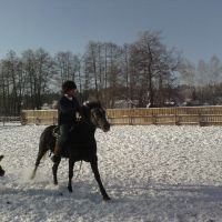 Лукоморье зимой, Золотаревка