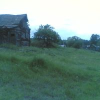 старый дом, Золотаревка