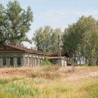 Бывшая участковая больница, Золотаревка