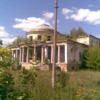 Дом Воейкова, Каменка