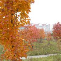 Осень, Каменка