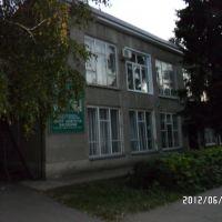Центр Занятости Населения., Кузнецк