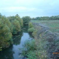 река Сердоба, Малая Сердоба