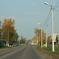Сельская улочка, Наровчат