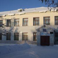 School, Нижний Ломов