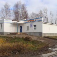"""Магазин """"Горизонт"""" (Радиотовары), Нижний Ломов"""