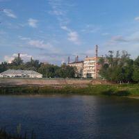 Пруд, Никольск