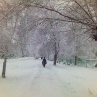 Snow Day / Снежный день, Никольск