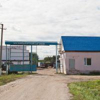 Сырзавод, Русский Камешкир
