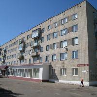 ул. Ленина, 152 (ЗАГС), 2009 год, Сердобск