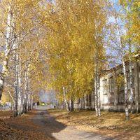 Около школы (About school), Сосновоборск